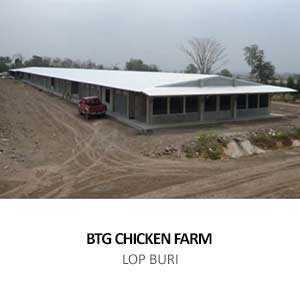 BTG CHICKEN FARM <br>LOPBURI
