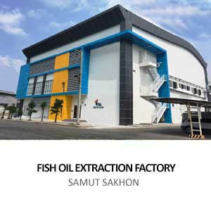FISH OIL EXTRACTION FACTORY <BR>SAMUT SAKHON